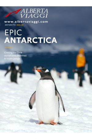 Epic Antarctica Crossing the Circle via Falklands (Malvinas) - South Georgia 18-12-2020