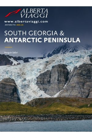 South Georgia and Antarctic Peninsula Penguin Safari from Buenos Aires
